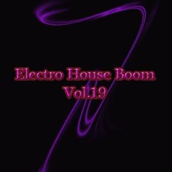 Electro House Boom Vol.19