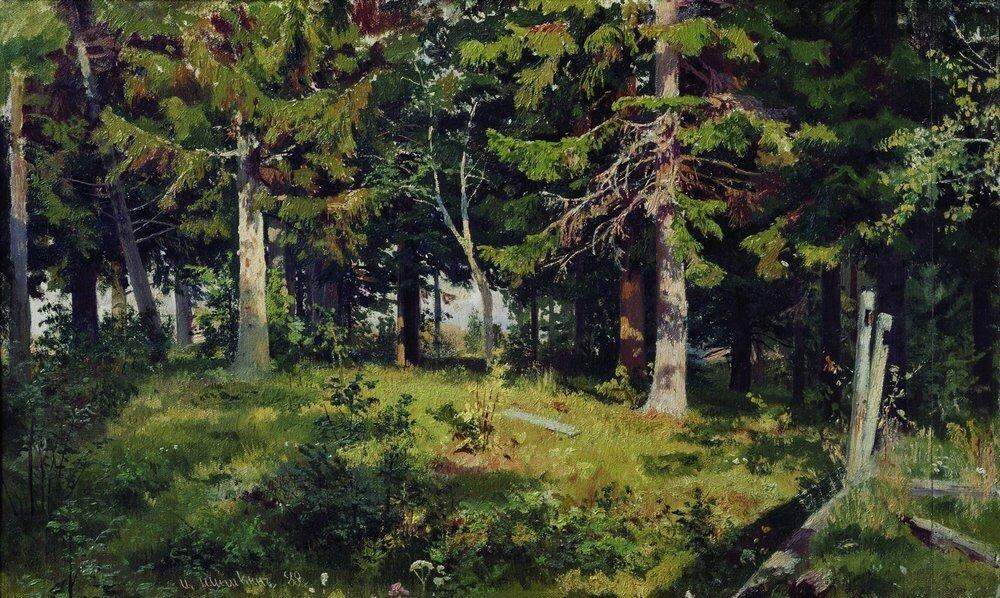 Поляна в лесу 1889 38х62.jpg