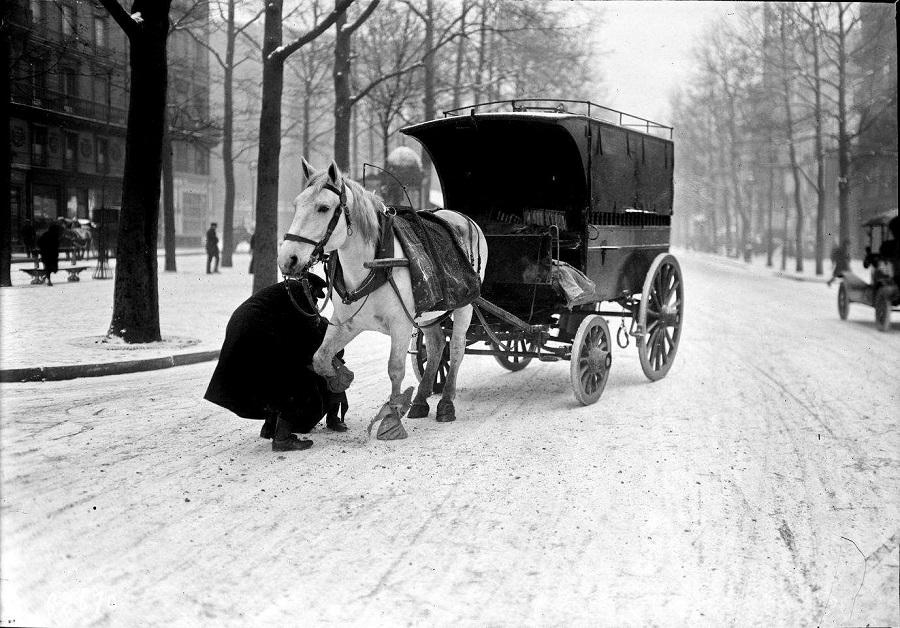 13 Décembre 1920, un cheval équipé pour marcher dans la neige.jpg
