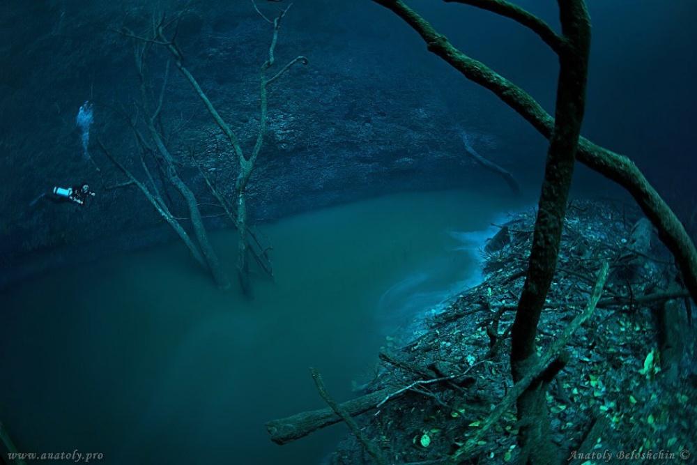 Дайвер обнаружил реку… под водой (4 фото)