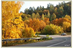 золтая осень