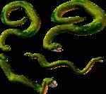 змеи  (7).png