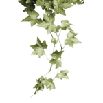 MS White X-mas element 69.png