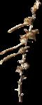 ldavi-ThePoet'sKeepsakes-driedflower1.png