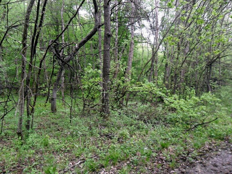 В апреле, поход в окрестностях Горячего Ключа