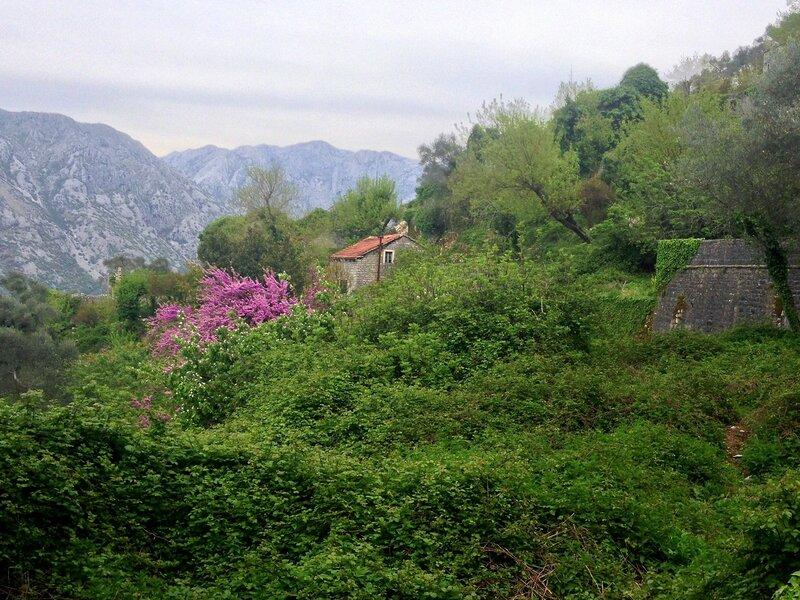 Горни Столив, Черногория