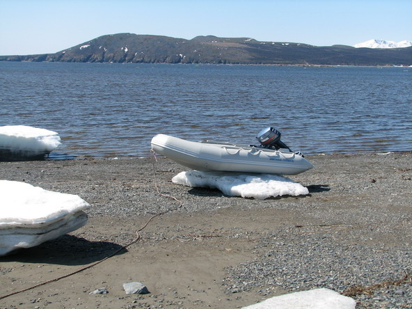 лодка на льдине.jpg