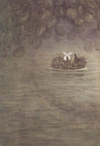 Ёжик плывет по течению..