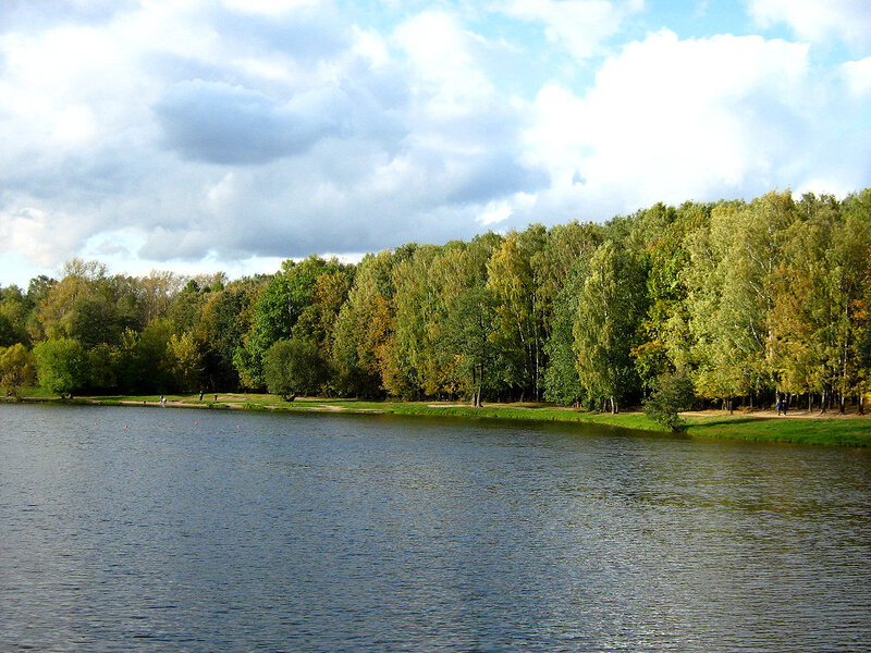 Осенний лес у пруда