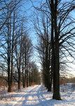 зима-3.jpg