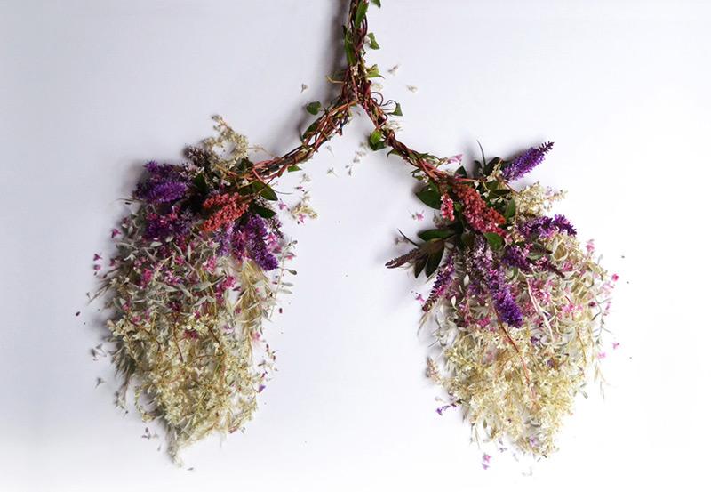 Внутренние органы из цветов (5 фото)