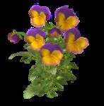 цветы (58).png