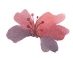 3_Floral (110).png
