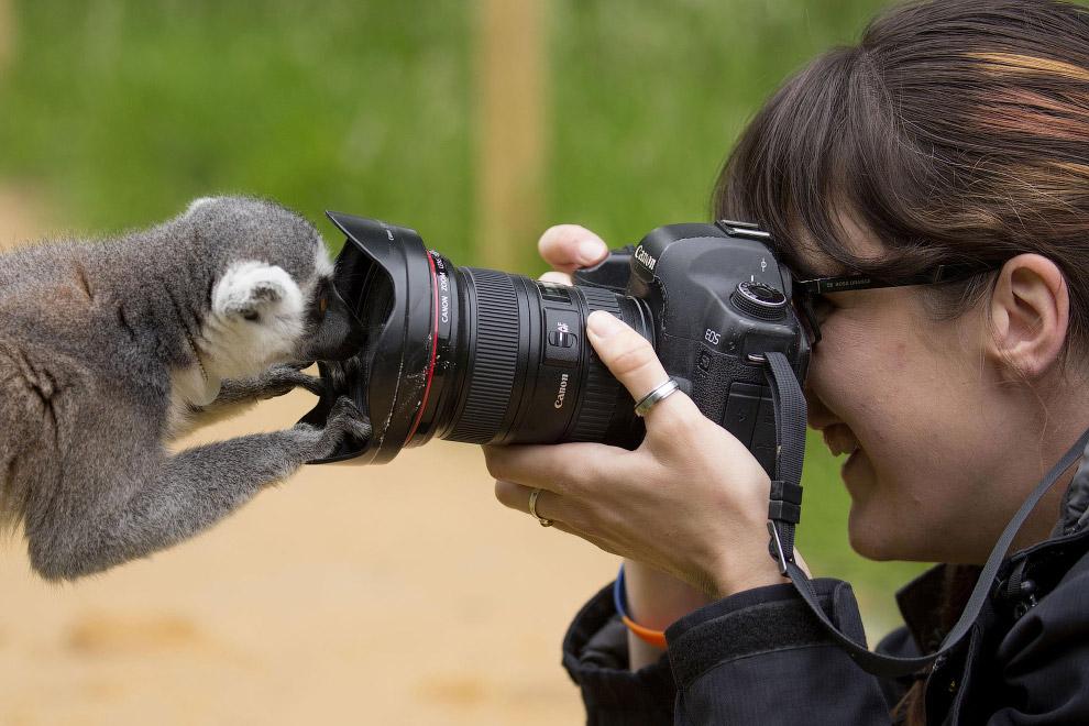 слишком однотипно, фотографы и интересные факты о них консультация или