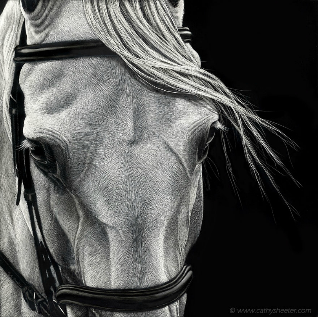 Starting-From-Scratch-The-Hyper-Realistic-Scratchboard-Art-of-Cathy-Sheeter-5a1376ee62c31__880.jpg