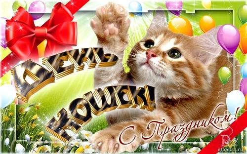 Открытки с Всемирным днём кошек. С праздником