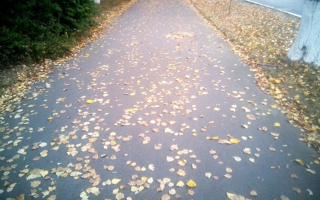 Осень Мариуполь Иван Шашлов 2017 Autumn Fall Mariupol Ivan Shashlov