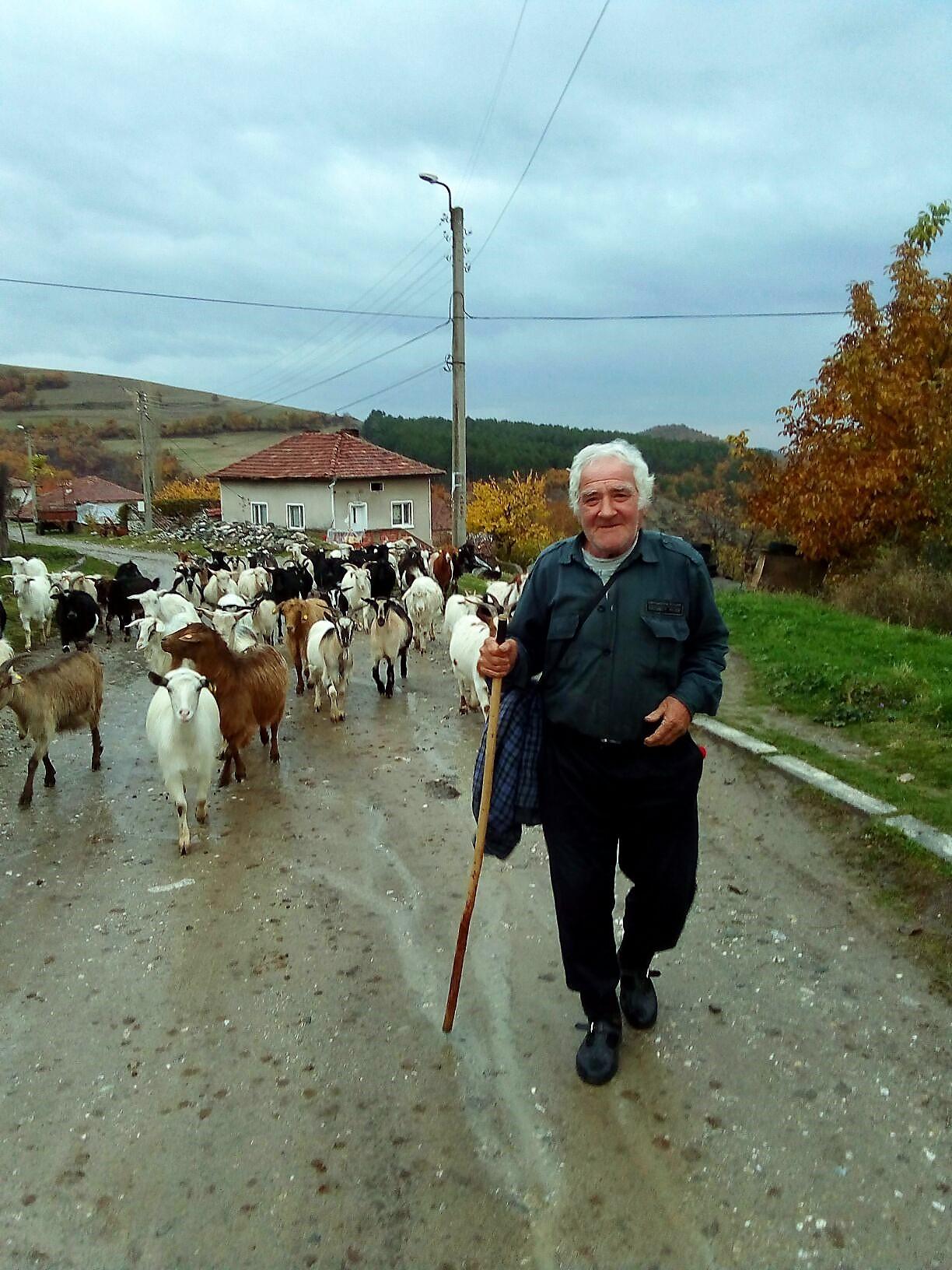 Наш пастух, тоже Иван.jpg