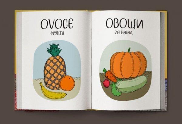 0 17fffe e0492d9f orig - Переводчик с чешского на русский в картинках
