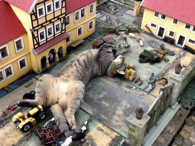© Dmitry.Kremlev/pikabu      Они делают ужасные вещи. Например, этот пес съел дома