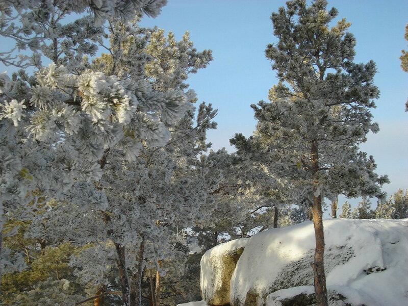 Красота зимней Зеренды. Автор- Евгения Шамрай. p05.jpg