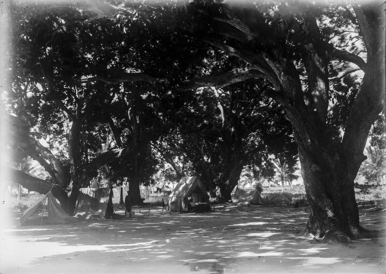 386. Палаточный лагерь экспедиции в деревне Фреретаун