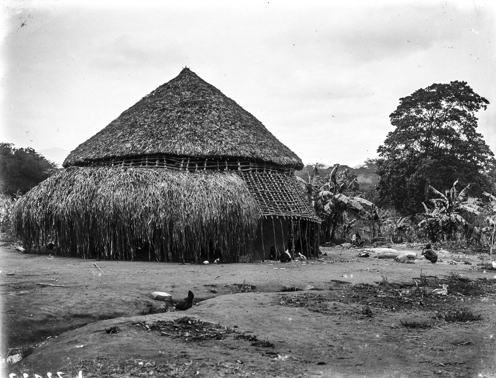 33. Вид на круглую хижину Юмбена (старосты деревни) в  горах Паре