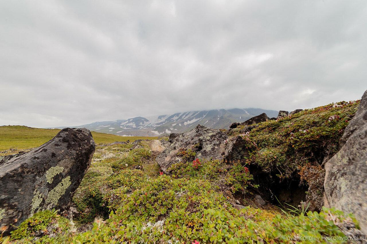 Kamchatka-481.jpg