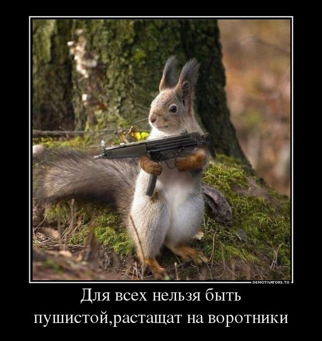 54730192_dlya-vseh-nelzya-byit-pushistojrastaschat-na-vorotniki.jpg