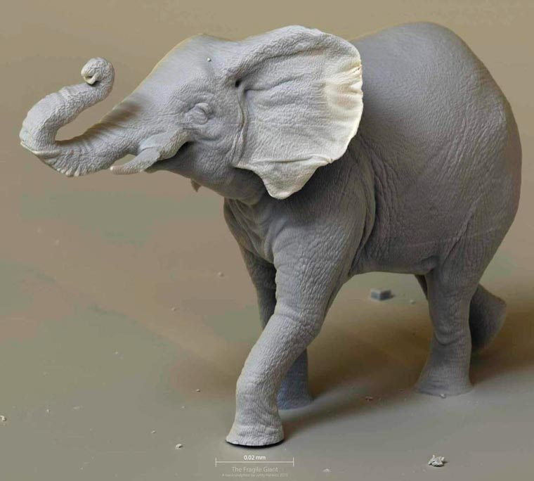 This elephant sculpture is the smallest man-made object ever filmed