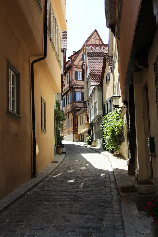 Переплетение дорог: Романтической, Часовой, Винной (Германия-Франция, лето 2017).