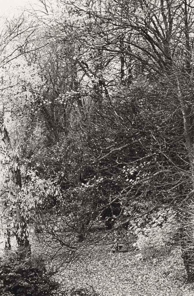 1988. Старушка в парке (жена фотографа Мари-Энн с болезнью Альцгеймера)