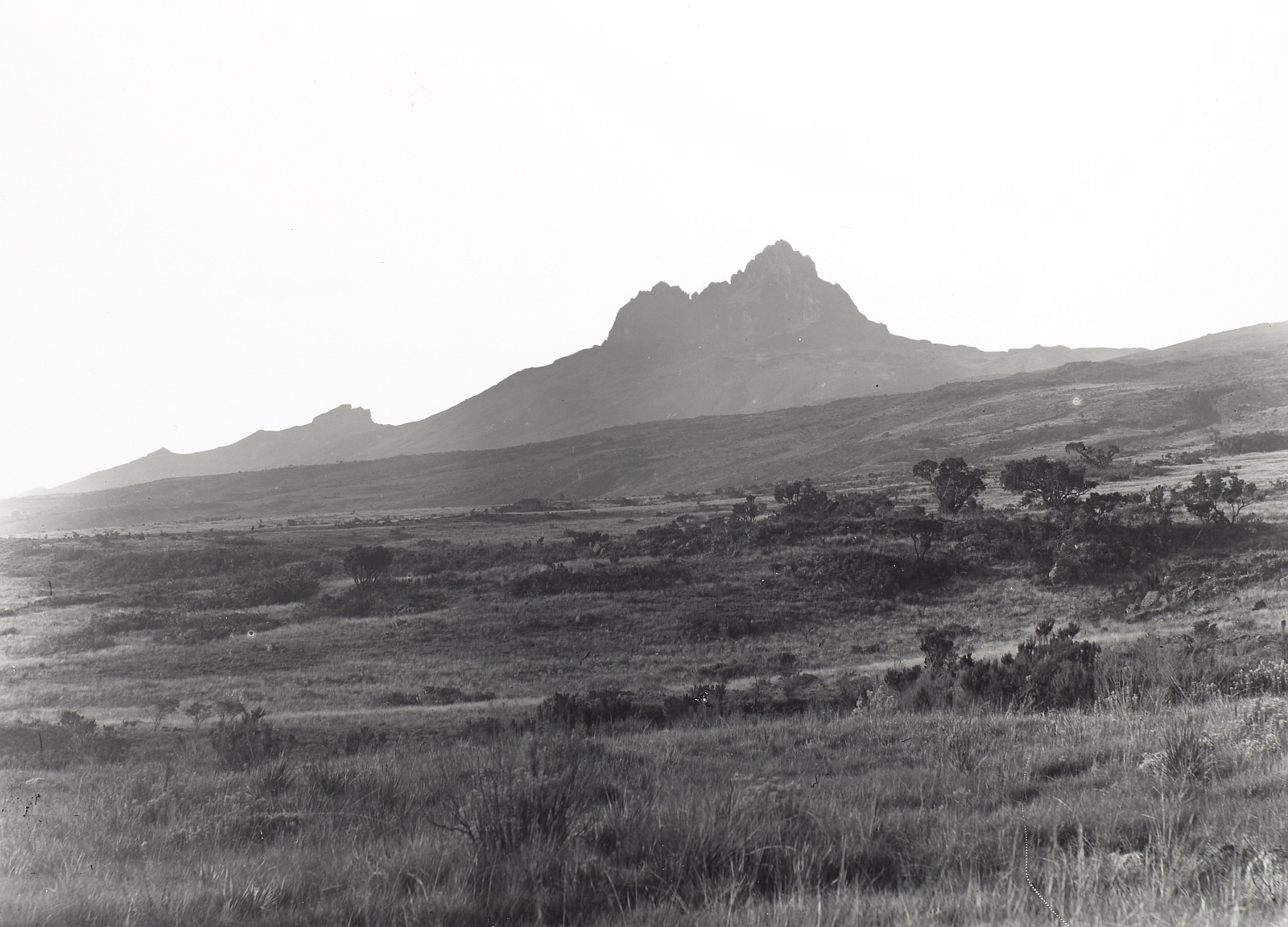 03. Килиманджаро. Вид Мавенси
