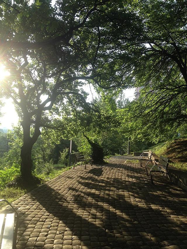 18. Парк Мзиури утром