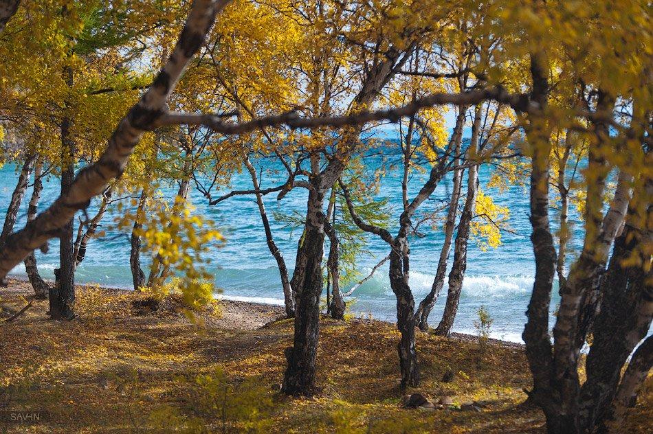 Ширина Байкала меняется от 25 до 79 км. Дно Байкала находится на отметке 1 167 метров ниже ур