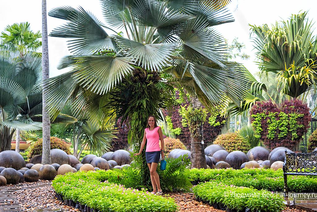 нонг нуч тропический ливень
