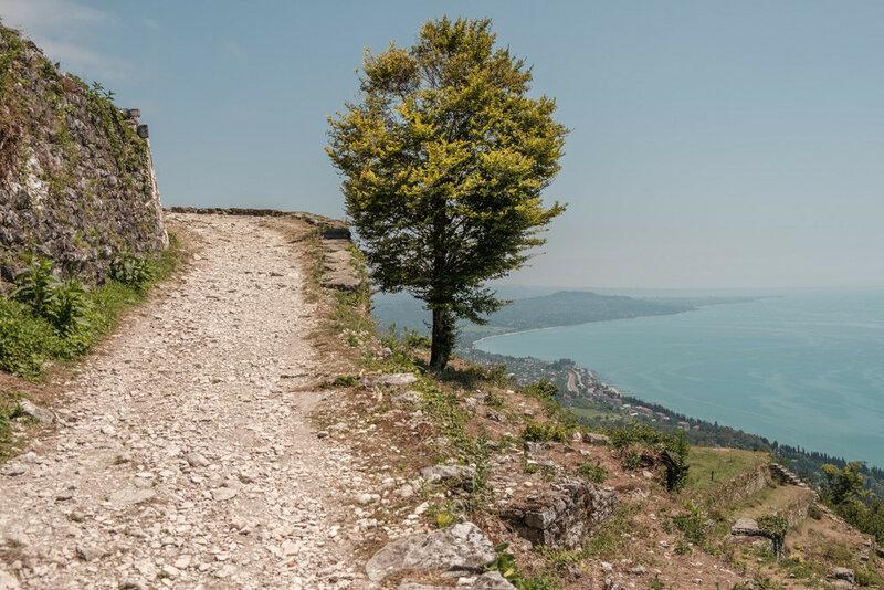 поворот дороги и дерево на вершине Иверской горы, до вершины 200 метроы