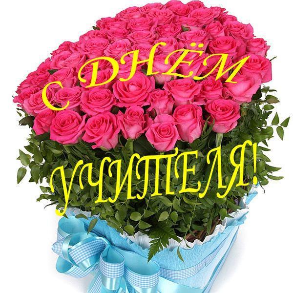 Открытка. С днем учителя! Огромный букет розовых роз открытки фото рисунки картинки поздравления
