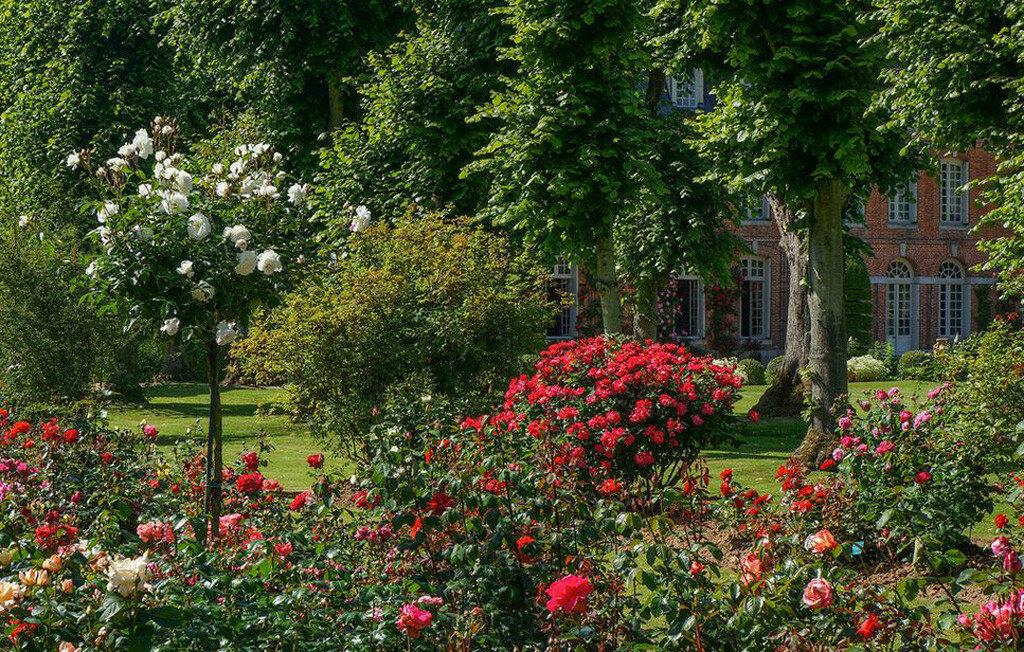 Roseraie_chateau_Mesnil_Geoffroy07.jpg