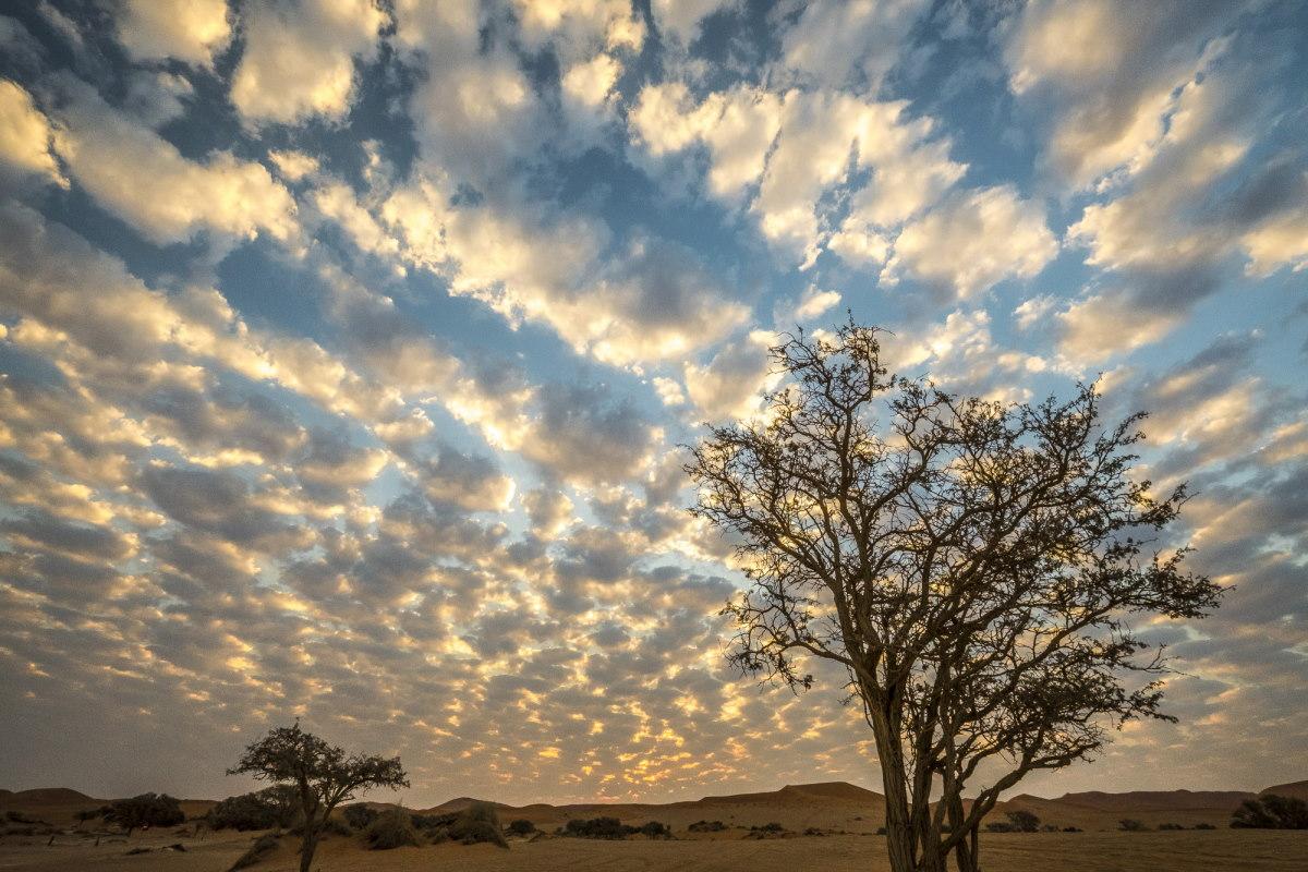 пейзаж Sossusvlei, пустыня Намиб