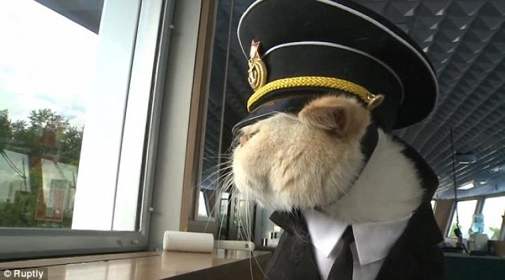 Вот так он, бывает, сидит у окошка и высматривает опаздывающих пассажиров.