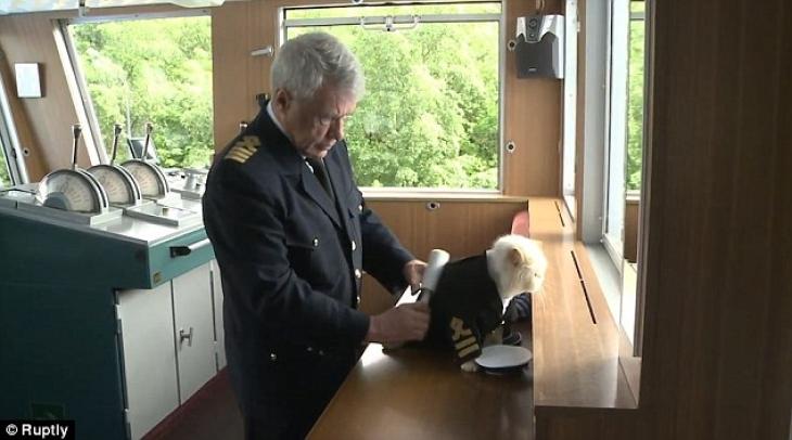 То, что капитана корабля зовут Владимир Котин, наводит на мысли, что наличие кошачьих на судне — не