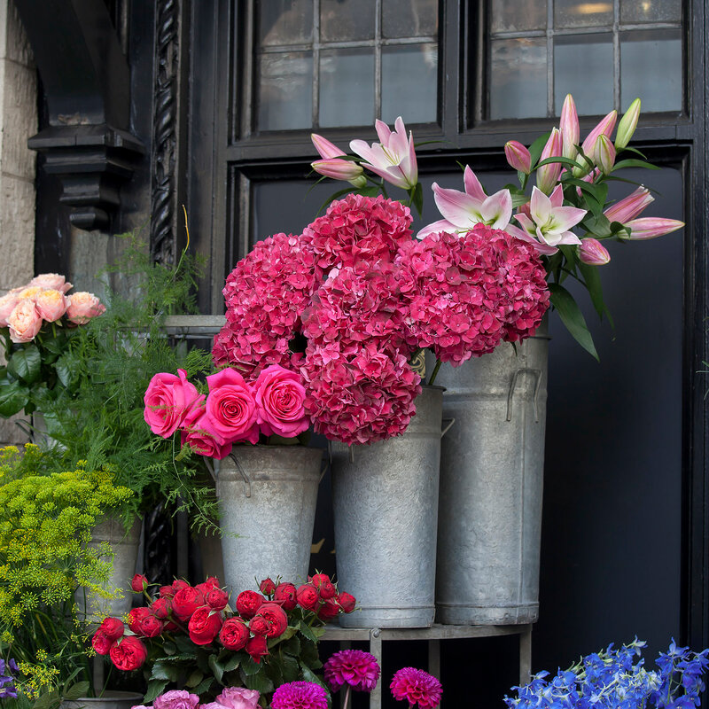 the Pink, purple roses and hydrangeas, as well as pale white lilies for sale at the entrance to the flower shop
