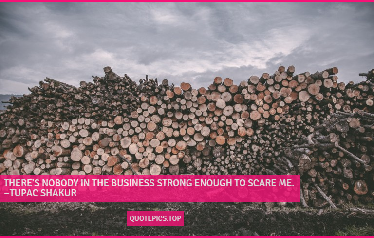There's nobody in the business strong enough to scare me. ~Tupac Shakur
