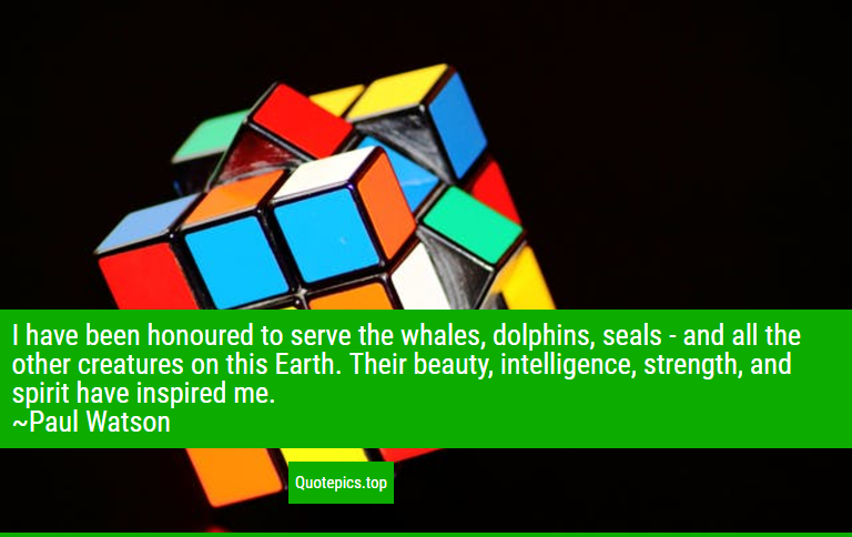 I have been honoured to serve the whales, dolphins, seals - and all the other creatures on this Earth. Their beauty, intelligence, strength, and spirit have inspired me. ~Paul Watson