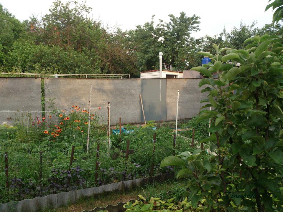 огород-0.jpg