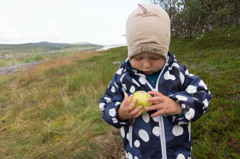 ребенок с яблоком из val venosta