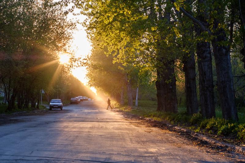 заходящее солнце на улице набережная пробивается сквозь листву