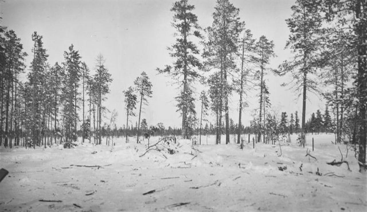 61. Зимний пейзаж