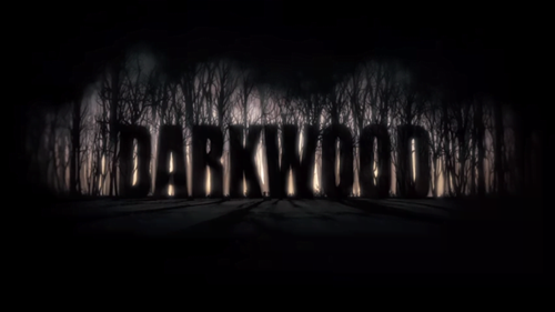 Darkwood (2017/RUS/ENG/POL)